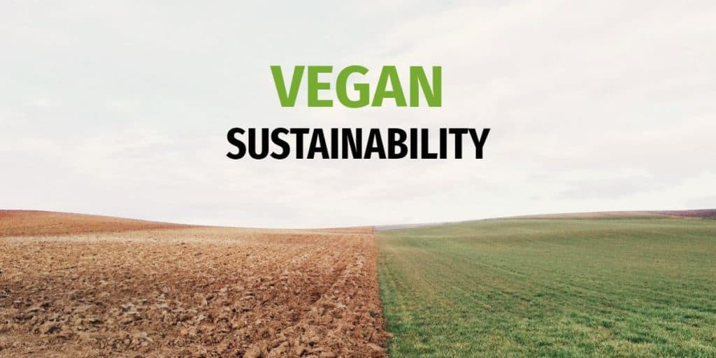 Vegan sustainability