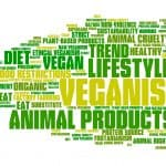 Vegan statistics