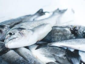 do vegans eat fish