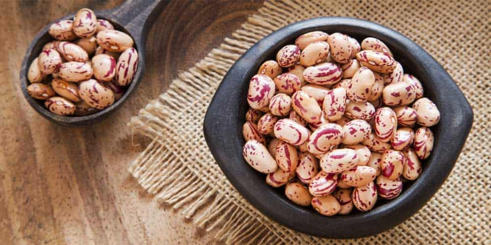 Are pinto beans a complete protein?