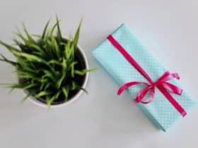 gift ideas for vegans